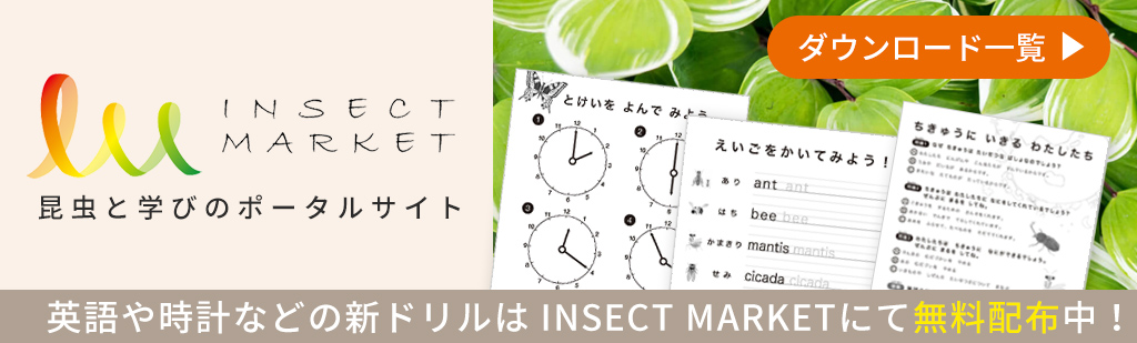 INSECT MARKET 学びドリル一覧
