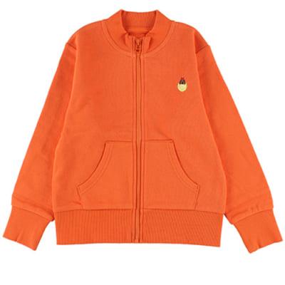 インセクトコレクション スタンドジップジャケット【ほたるさん】