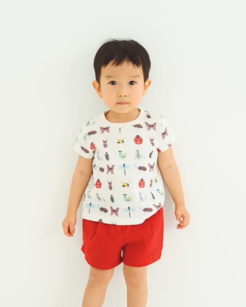 昆虫大集合Tシャツ 2,480円