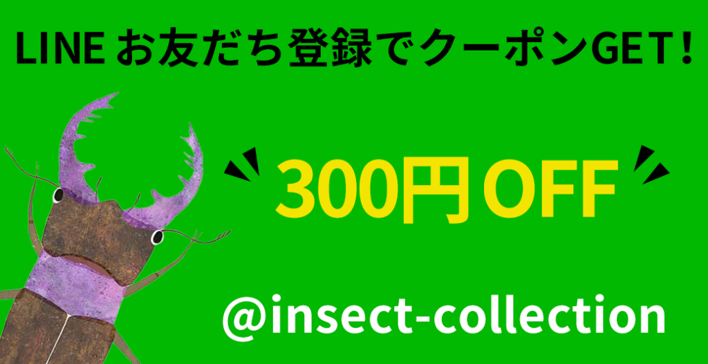 Insecct CollectionのLINEで300円OFFクーポンを配布中!