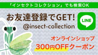 インセクトコレクション LINE登録で300円OFFクーポンゲット!
