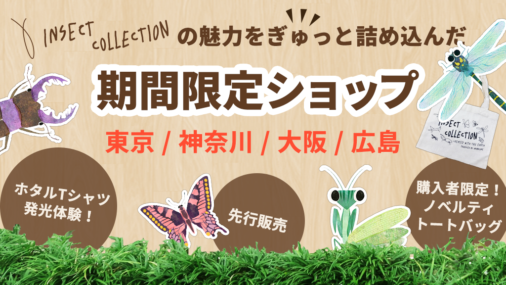 Insect Collectionのリアル店舗が登場