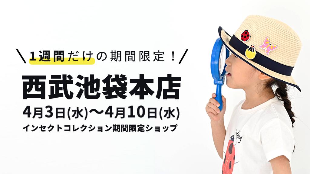 4月3日(水)より西武池袋本店にてInsect Collectionの期間限定ショップがOPEN!