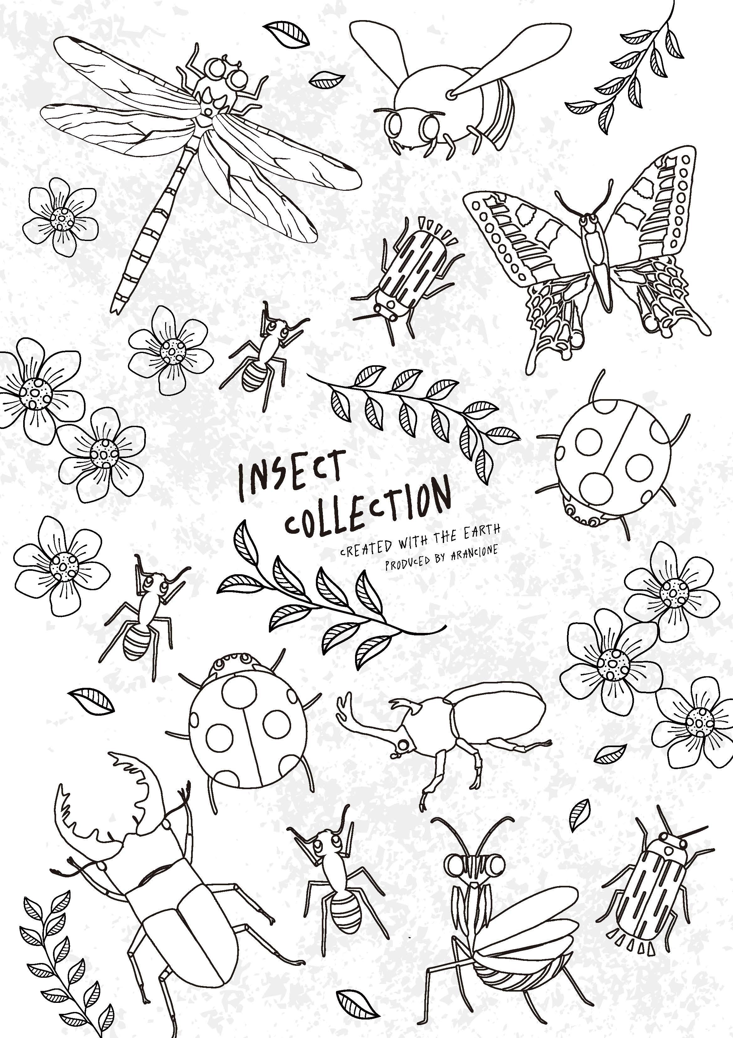 インセクトコレクション 昆虫大集合無料ぬりえ