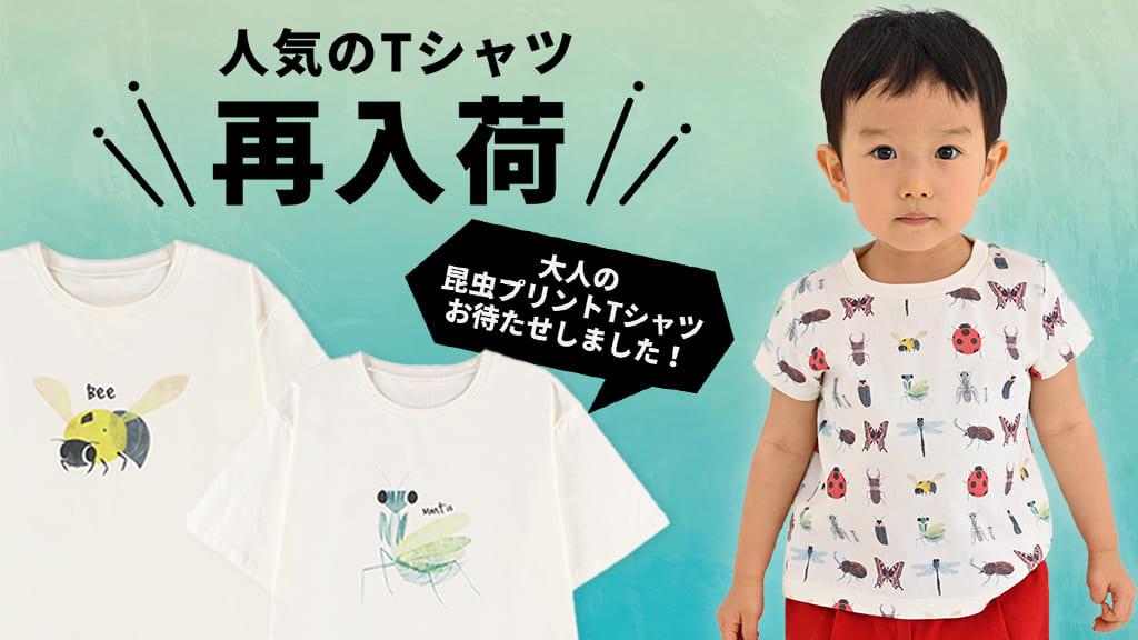 Insect Collection 再入荷アイテム一覧 2019/6/21