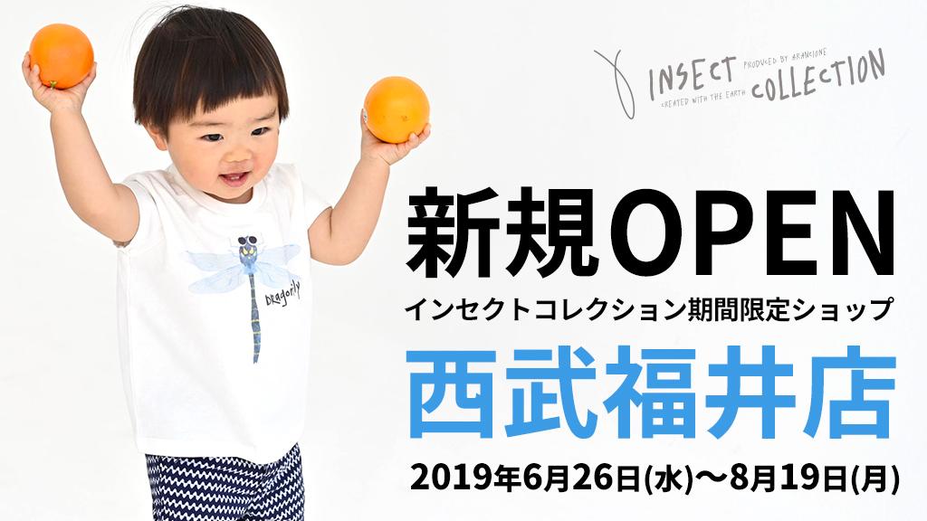 インセクトコレクション期間限定ショップ 西武福井店