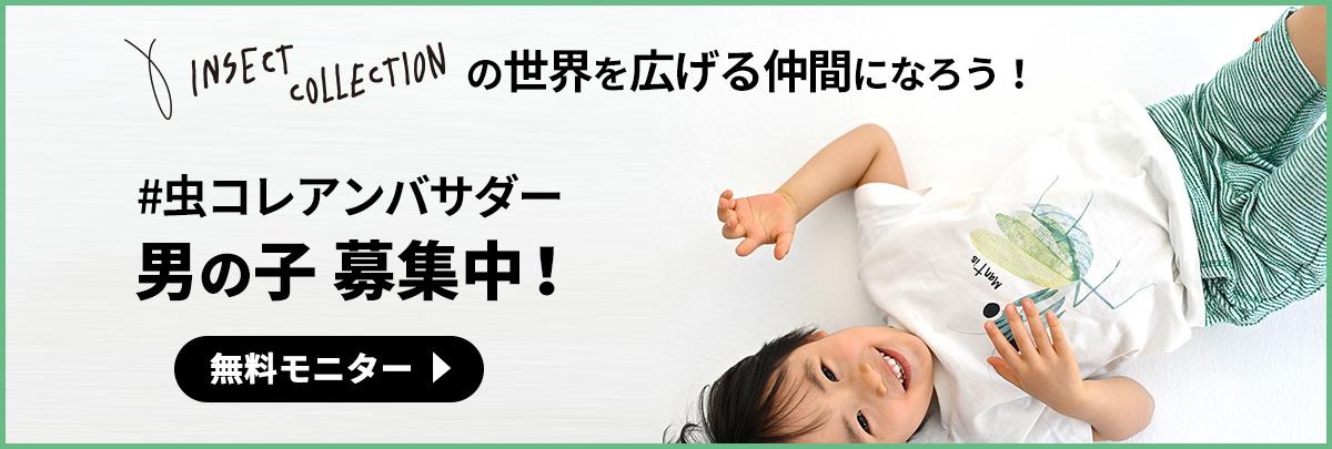 インセクトコレクション男の子アンバサダー募集!(無料モニター)