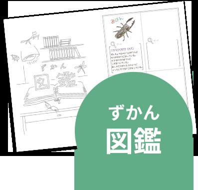 インセクトコレクション 夏休みの宿題 図鑑