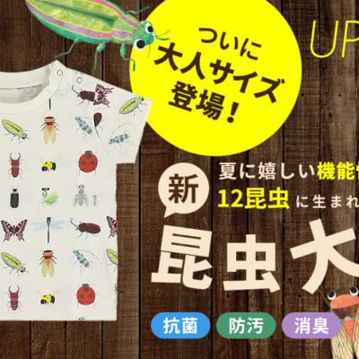 夏に嬉しい機能をプラスして 昆虫大集合Tシャツが12昆虫に!