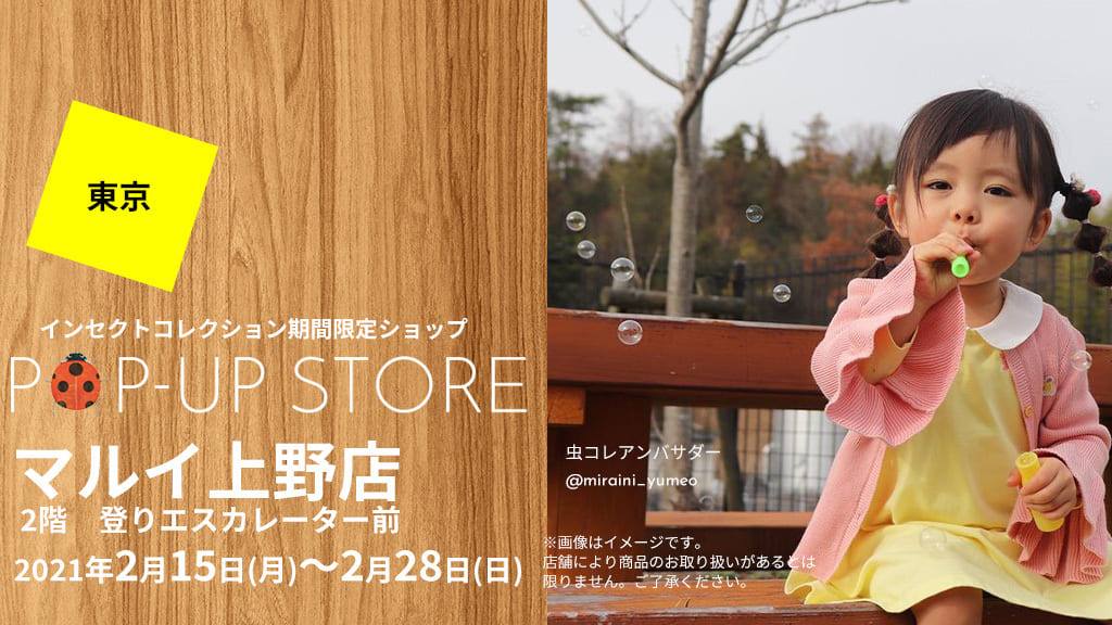 インセクトコレクション期間限定ショップ 上野マルイ
